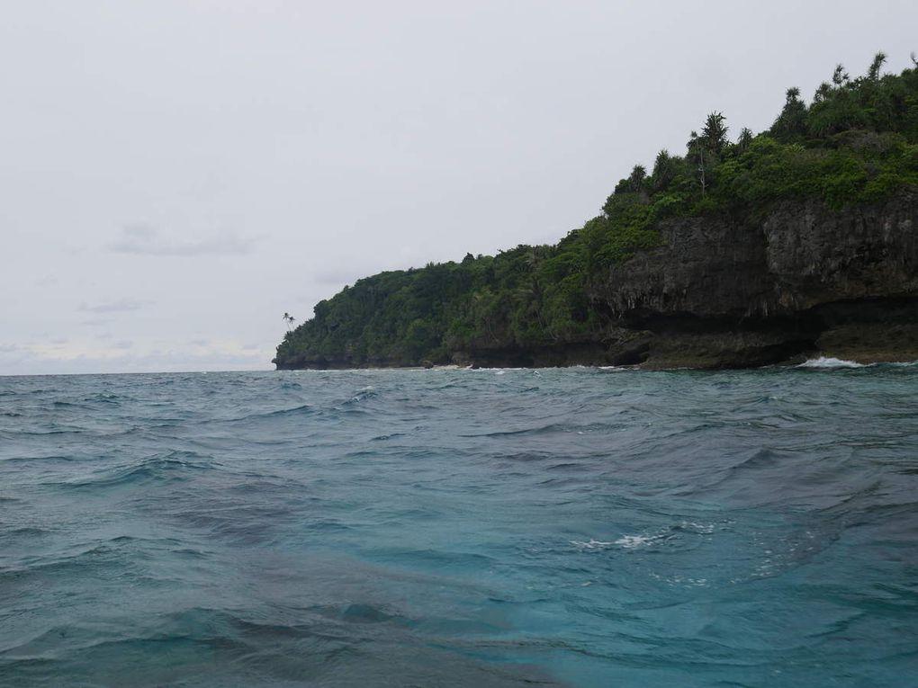 Certes, l'accueil est exceptionnel dans l'archipel des Banda. Mais les touristes y vont aussi, voire surtout, pour découvrir une mer incroyablement belle. Elle est limpide et poissonneuse, les coraux durs et mous en tout genre y abondent, la visibilité est souvent de vingt à vingt-cinq mètres, le tombant la plupart du temps proche du rivage: le spectacle est réjouissant ! On se croirait littéralement dans un aquarium ...Sur l'île de Run, où il faut nager un peu pour atteindre le tombant, on trouvera davantage de gros poissons, en plus des tortues:  requins à pointe noire, napoléons en groupes souvent  de trente individus( bumpedhead fish en anglais ), raies, bonites, barracudas, carangues, mérous etc. En longeant le tombant d'Ay, à dix mètres du rivage, ils seront moins impressionnants mais plus nombreux encore.: plus de poissons tropicaux, poissons-lions, -clowns, -anges, -lunes, -trompettes,perroquets, balistes défendant leur territoire etc. L'apnéiste est dans un des plus beaux coins du monde !