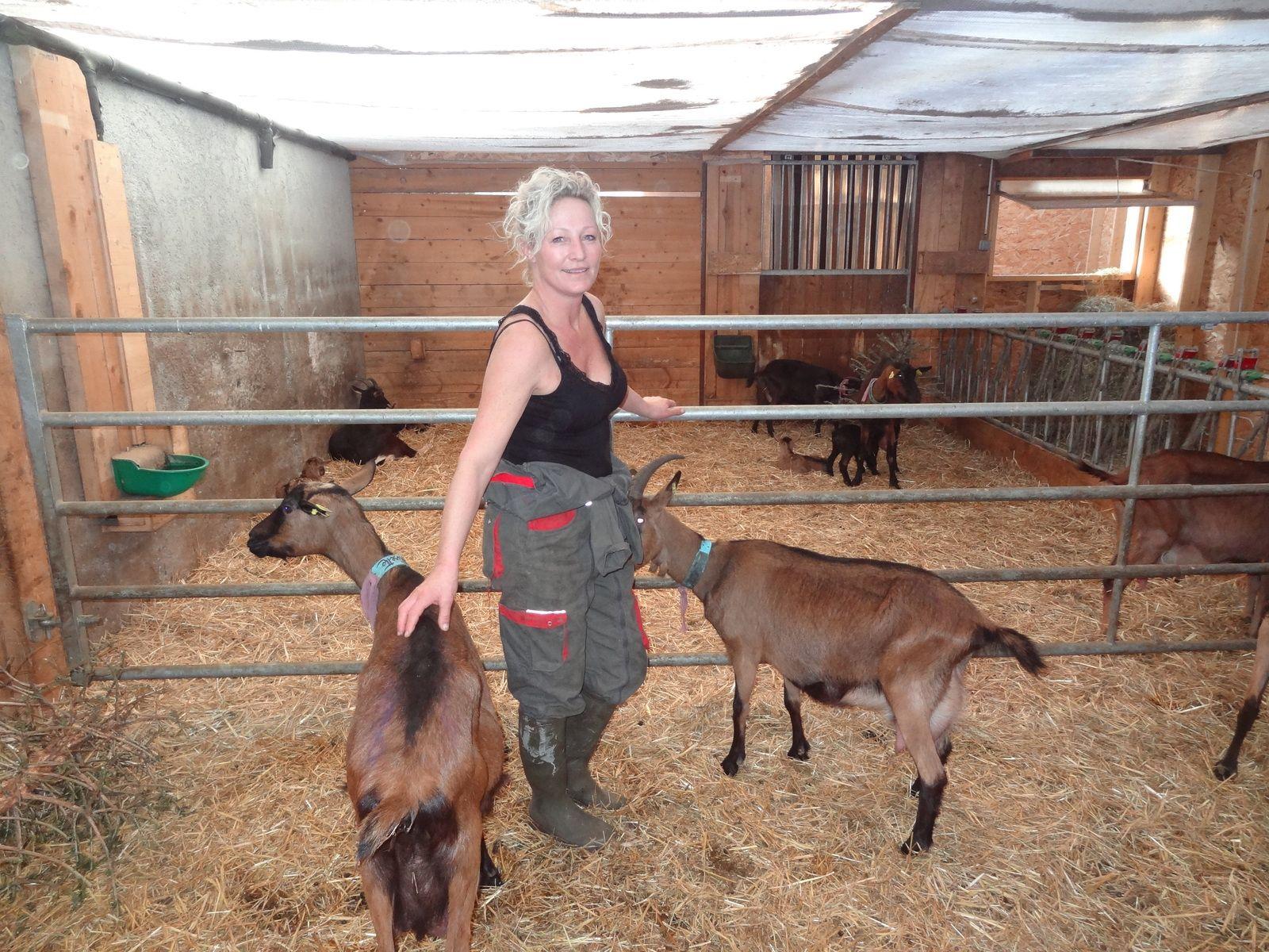 Valérie et sa chèvrerie : un rêve qui devient réalité !