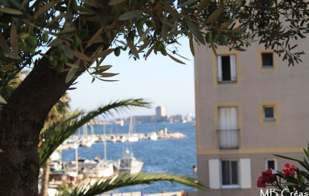Sardinades entre Port de Bouc et Martigues