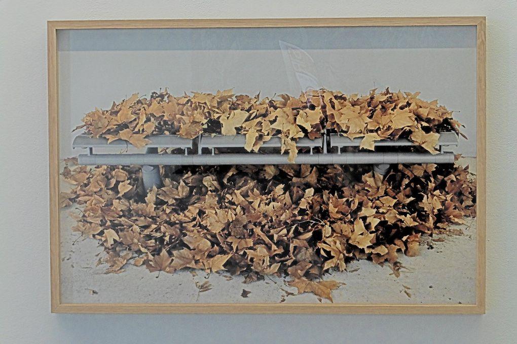 "André Mérian ""Never Mind"" collection FRAC (2016)"