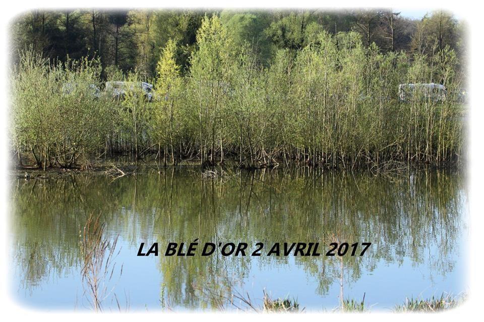 Album photos du grand parcours de la Blé d'or (28)