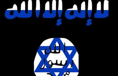 """DU GOLAN AU SINAÏ, LES TERRORISTES SONT DES ALLIES D' """"ISRAËL"""""""