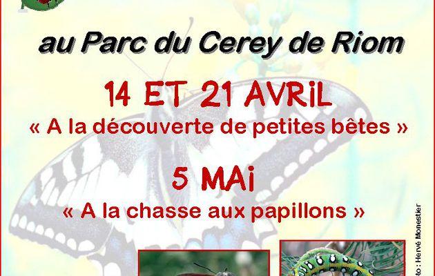 Sorties INSECTES et PAPILLONS pour les enfants - RIOM parc du Cerey