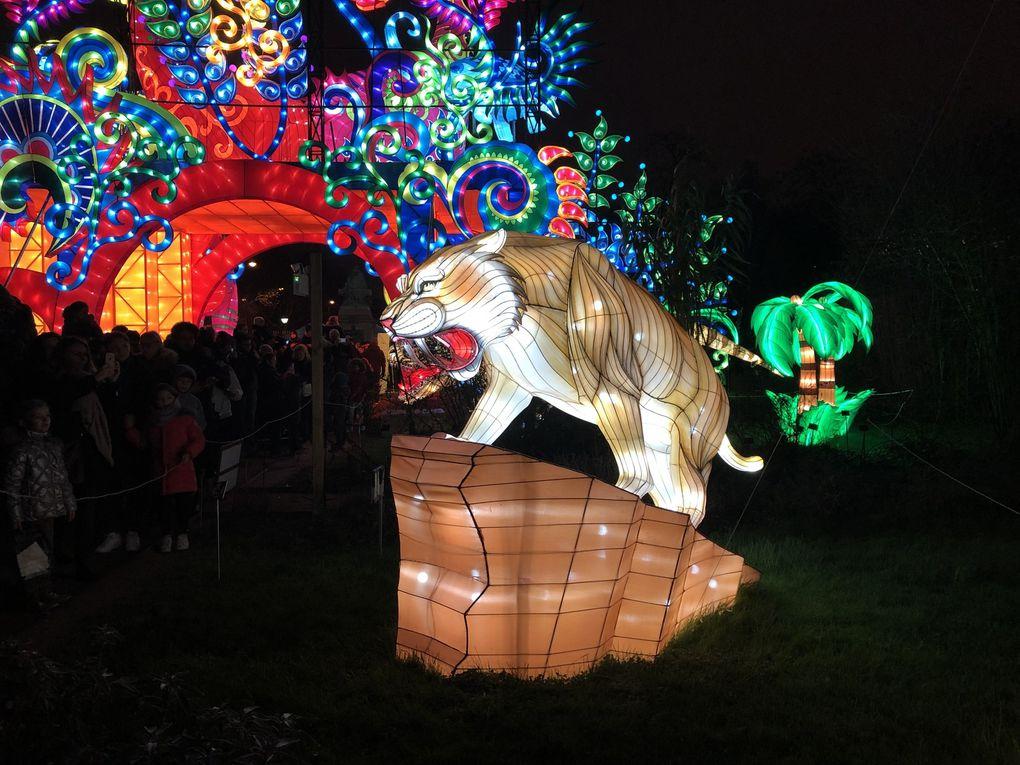 Espèces en voie d'Illumination au Jardin des Plantes.