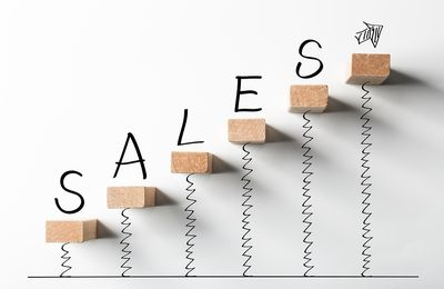 Mike Dastic - Sales techniques: Functions of the service seller