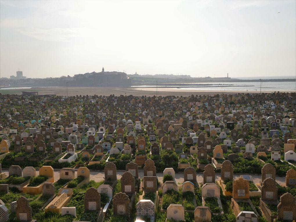 Avec ses vénérables monuments, son immense cimetière marin posé face au soleil couchant, et surtout son marché à l'ancienne, qui court dans les ruelles populaires, Salé ne manque pas de charmes.
