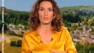 Le JT de 13 Heures de TF1 victime d'un bug ! (Vidéos) #JT13h