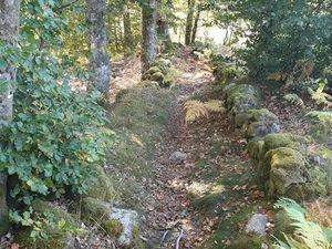Ces sentiers vous invitent à la randonnée.