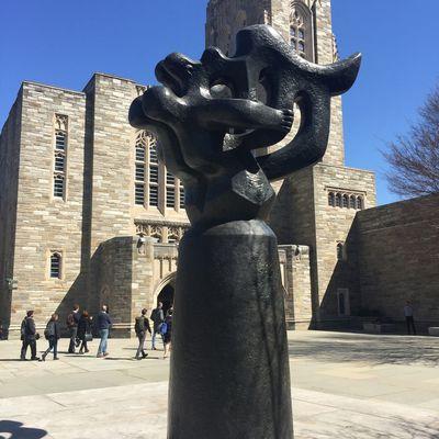 Princeton Université...