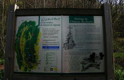 Balade botanique de printemps sur les hauteurs de Cessens-le Sapenay et à Brison-les-oliviers