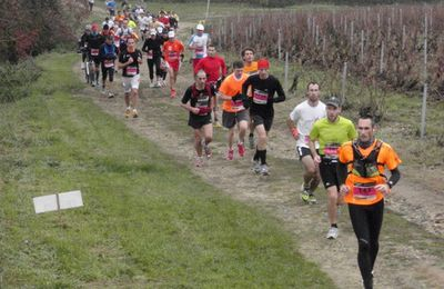 Marathon International du Beaujolais 2012
