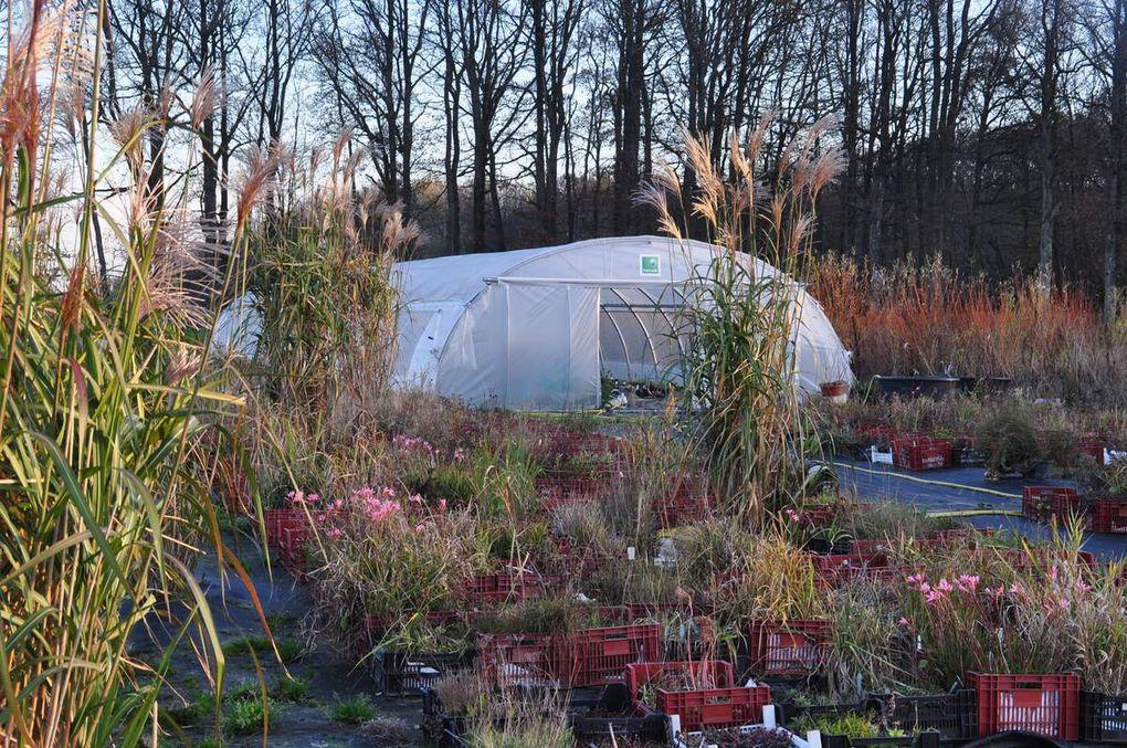 Suivi des travaux de mise en oeuvre de la nouvelle pépinière et du Flérial (Jardin Punk expérimental), sur la commune de Volgré, dans l'Yonne