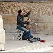 La lame sonore de Gladys HULOT à la cathédrale de Reims - Images du Beau du Monde