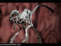 Bambi version raptor