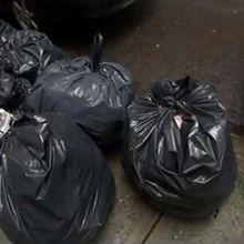 Petite histoire de nos ordures. Londres (5/5)