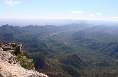 Les loulous en Australie J13 : Flinder Ranges