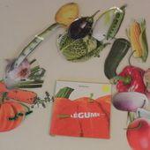 sac à album Grosse légume chez SylT: photos 2014 - école petite section