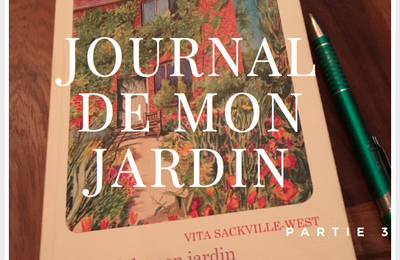 Le Journal de Vita, mes notes - partie 3