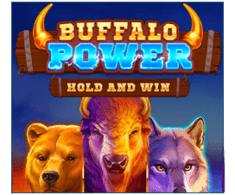 machine a sous Buffalo Power logiciel Playson