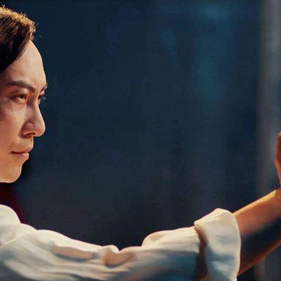 Ip Man Kung Fu Master