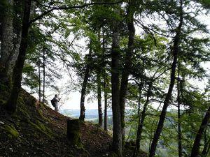 Du 1er au 3 septembre,  séjour à Morteau, dans le Haut-Doubs