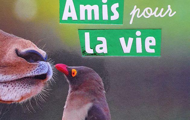 Défis Nature : amis pour la vie, la collaboration Bioviva et Editions Fleurus