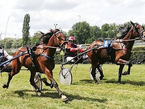 4 Avril 2018  ANGERS  R1-C1 Trot