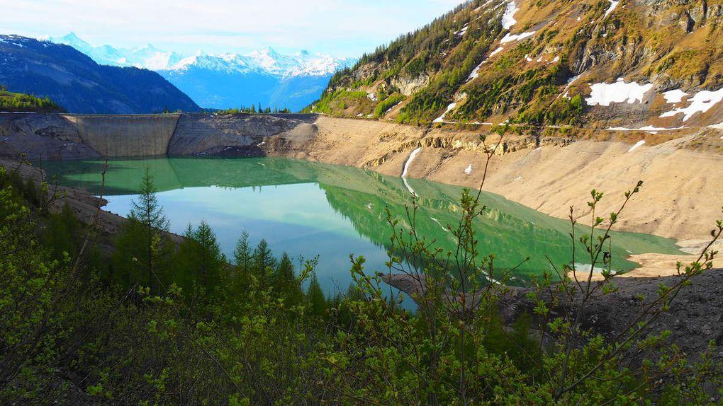 VS: Lac de Tseuzier, alpage de Rawil
