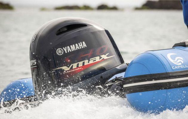 Yamaha SHO VMAX - Julien, chef d'atelier chez Bretagne Nautic (29) partage sa passion