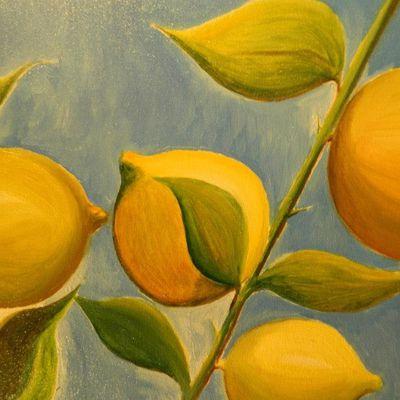 Rosi Lesto ed il Mare dei Limoni