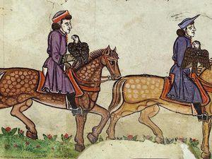 Quelques images du traité de fauconnerie de Frédéric II