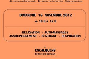 Stage d'Aiki Taiso à Escalquens le dimanche 18 novembre 2012
