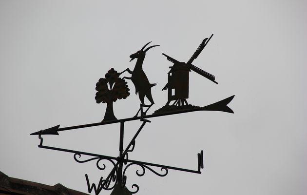 La grande bouderie du vent