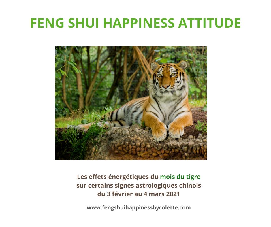 Les effets de l'énergie du mois du tigre sur certains signes astrologiques du 3 février au 4 mars 2021
