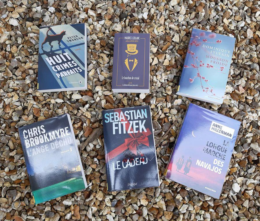 De nouveaux livres à la bibliothèque
