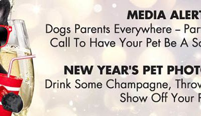 Participate In Casting Call To Have Your Pet Be A Social Media Star
