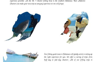 Book a Perfect Fishing Guide in the Bahamas