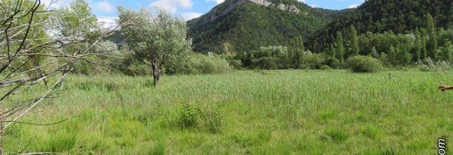Le marais des Bouligons (2) /  Balade dans la Drôme