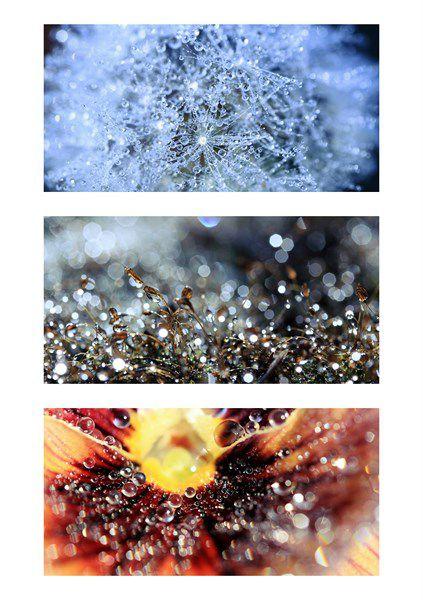 Edition ados et adultes. Images créées par Sébastien MONCHAL (son site: http://www.territoireinfini.fr). Pour voir ou commander le livre : http://www.lalutiniere.com/histoires-a-grandir-debout-les-differentes-editions-a112993538