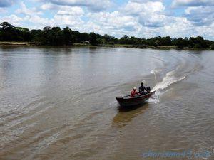 Pantanal nord (Brésil en camping-car)