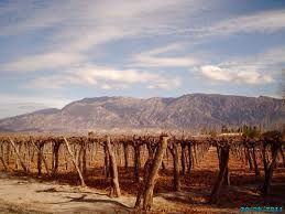 La région de San Juan et la Vigne