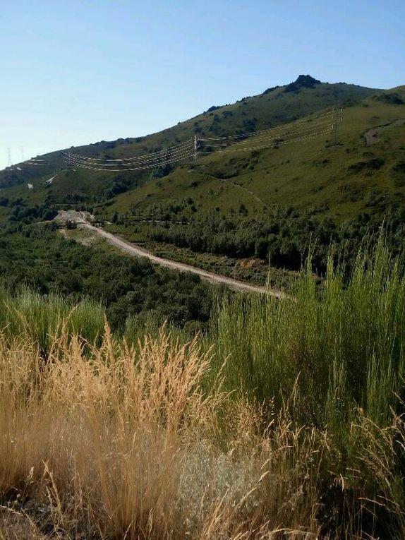Très valonné. Il faut grimper à plus de 1 300 mètres d'altitude. plusieurs centaines de mètres de denivelé positif.