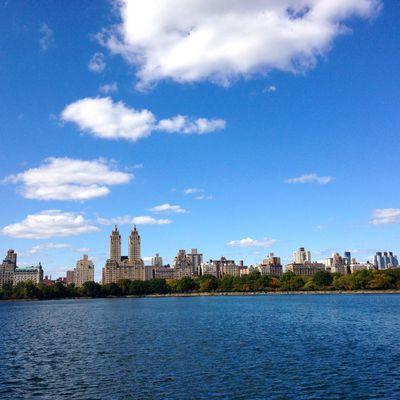 NYC : Une ville à croquer
