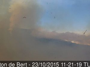 On the Rampart / Trail of the Piton of Bert : a burned area - photos © Bernard Duyck / June 2017 - recalls the eruption and the fire of the rampart the 23.10.2015 - with an archive view from the camera of the Piton de Bert, the closing of the trail and the intervention of the Dash 8 on the fire