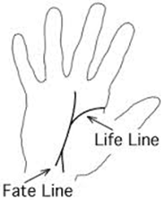 """Manish Rawat Astrologer: """"Fate line"""" has its placement at the center of palm"""