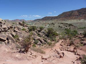 Delicate Arch trail. NP des Arches. Utah