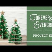 Forever Evergreen Project Kit by Stampin' Up!
