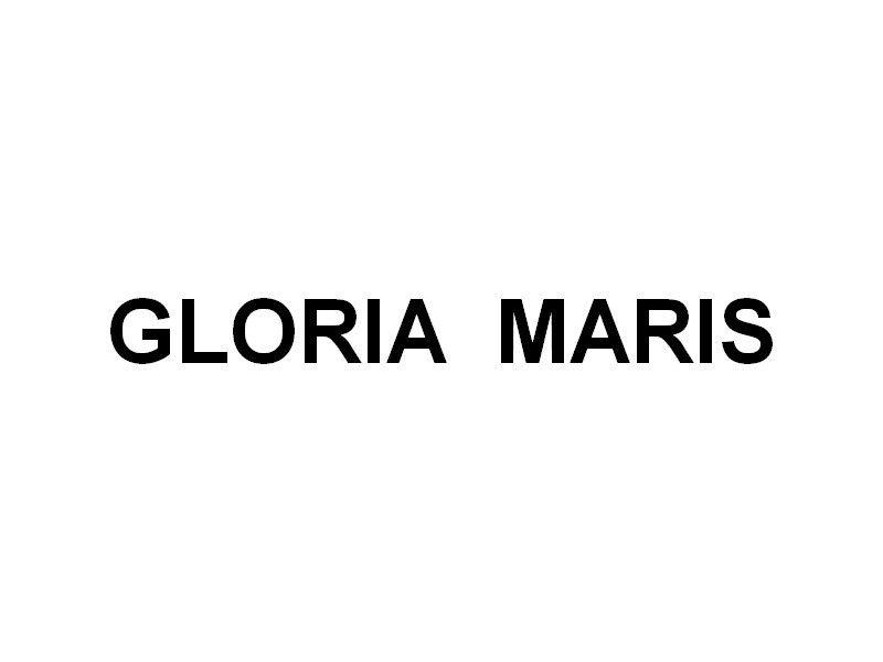 GLORIA MARIS , bateau d'un club de plongée