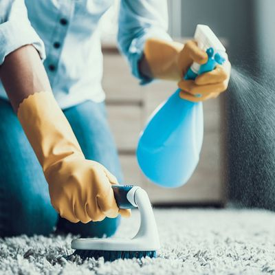 Why You Should Hire Expert Bond Cleaning Company?