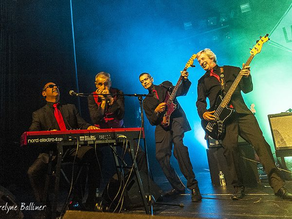 Festival de Traverse; les Shaggy Dogs et Mr Sipp & the New Blues Generation